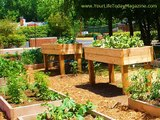 Best raised bed garden designs I Creative raised garden bed designs I Garden bed edging ideas