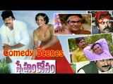 Sneham Kosam  Movie Comedy Scenes || Back to Back || Chiranjeevi || Meena
