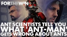 Ant scientists tell you everything 'Ant-Man' gets wrong about ants