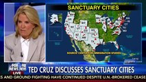 Ted Cruz tells the TRUTH: 'Democrats SUPPORT illegal immigration' [VIDEO]