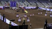 National Dog Agility Championships USDAA 2013 Susan Garrett