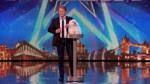 Marc Métral and his talking dog Wendy wow the judges ¦ Audition Week 1 ¦ Britain's Got Talent 2015