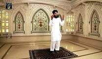 Pyari Pyari Nisbat Official Video - New Naat Album [2015]- Hafiz Sajid Qadri  - All Vedio Naat
