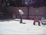 Nike SB Zoom Tre A.D. Review (+skating)