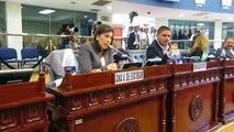 Diputada Ana Vilma de Escobar en pleno Sigfrido Reyes le quita  la palabra