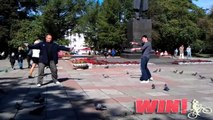 FAIL Blog  Dueling With Pigeons WIN