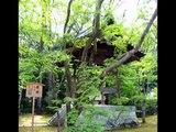 Asia Travel Golden Pavilion Temple Zen Garden Kyoto