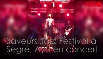 Saveurs Jazz Festival à Segré, Ayo en concert