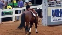 Master Snapper - Undefeated Reining Horse