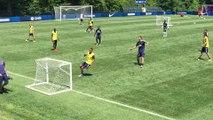 Foot - L1 - PSG : Ibra, de retour sur les pelouses