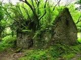 Los 25 lugares abandonados mas hermosos del mundo