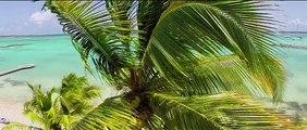 Nos Villas de luxe filmées par des drones au dessus du Lagon de Guadeloupe