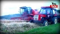 ►Prasowanie słomy◄New Holland T6020 Elite&New Holland BR 6090