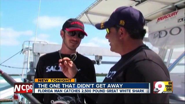 Fishermen catch great white shark