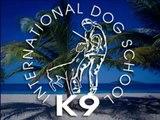 K9 training on St.Croix, U.S. Virgin Islands by Ludek Silhavy