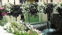 ANNECY .....une valse des fleurs  ** haute-Savoie france **