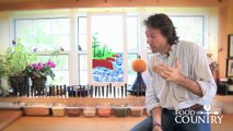 Tip: Chopping onions with Chef Michael Smith
