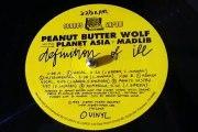 Peanut Butter Wolf Planet Asia Madlib - Definition Of Ill Remix (Instrumental)