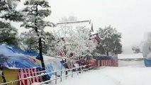 Neve Em Tokyo, Shinjuku, Nishiwaseda 2013/Jan/14 (Snow In Tokyo Shinjuku Nishiwaseda)