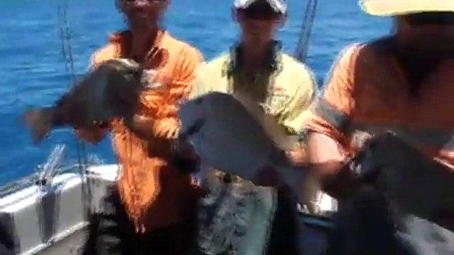 Unreel Reef fishing - Great Barrier Reef !!