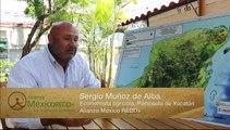 Sistemas silvopastoriles para mitigar el cambio climático en Yucatán