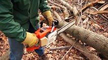 Stihl 031AV Gas Chainsaw