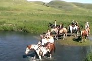 Sask Paint Horse Club - swimming with their horses at June 30, 2012 Trail Ride