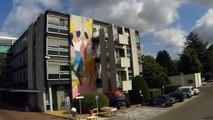 Street art : quand les murs de l'AFM-Téléthon / Généthon prennent des couleurs (version Time-lapse)