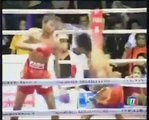 Great Muay Thai Knockouts NEW 2011