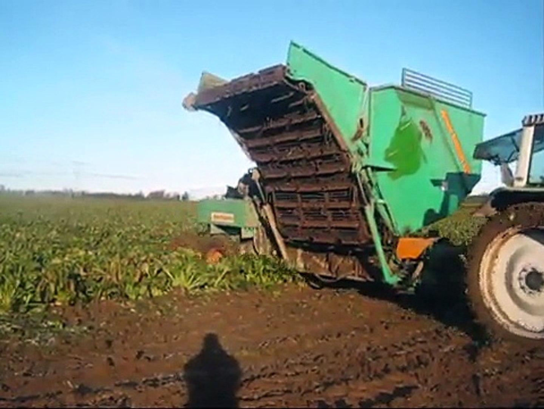 claas challenger 45 pulling 3 row armer beet harvester