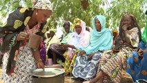 EU Cooperation with Mali - Water and irrigation projects in the area of Segou