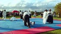 The Japanese Fair 2015 Sri Lanka