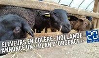 Eleveurs en colère : Hollande annonce un « plan d'urgence »