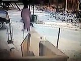 When Crazy Animals Attack   Vicious cat with rabies attack caught on CCTV