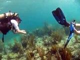 Beautiful Shore Diving with Alex and Amy, Mahoe Bay, Virgin Gorda BVI Caribbean