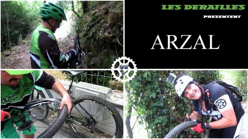 ARZAL - 2015