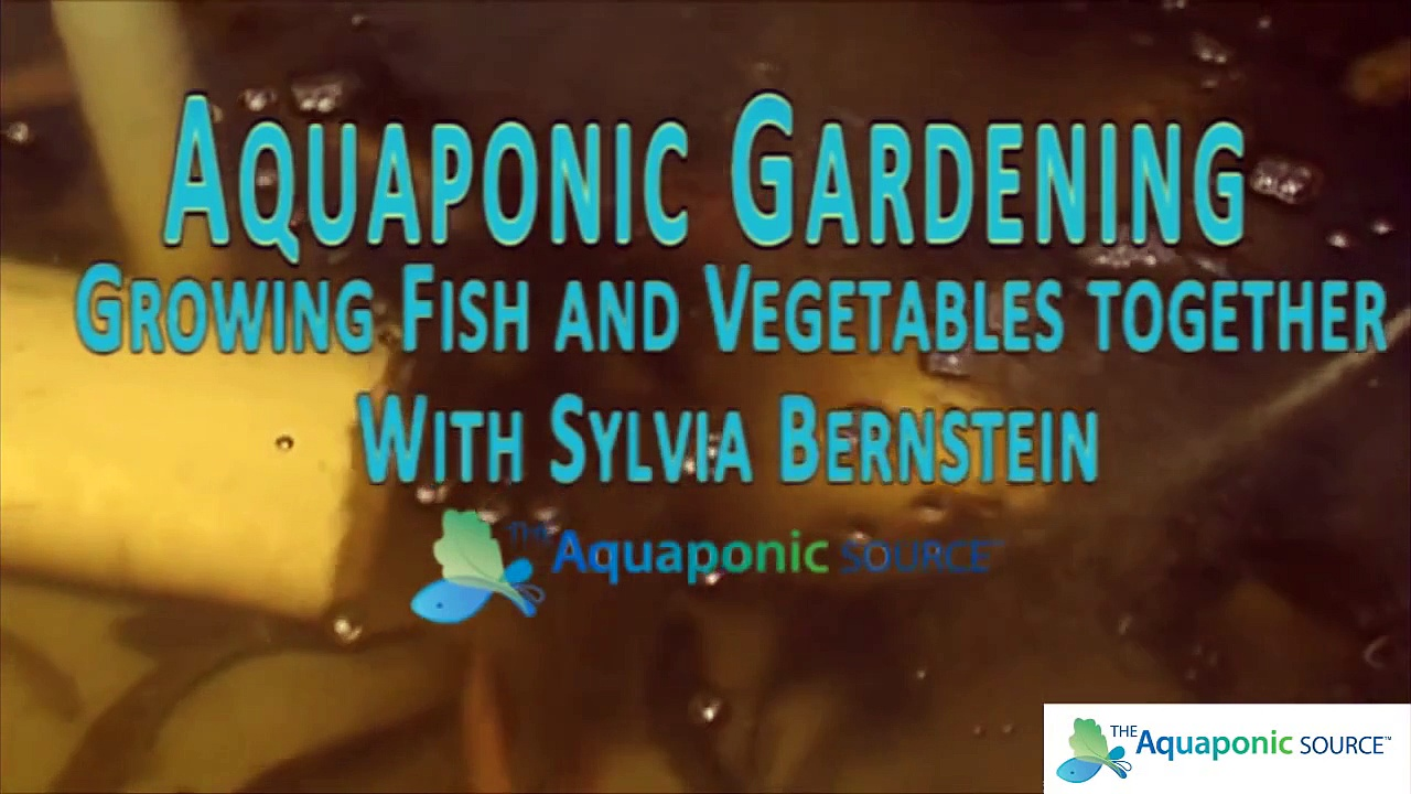 Sizing your Pump for Aquaponics
