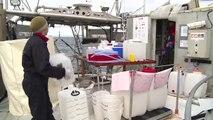 L'activité à bord de Tara pour patienter - Expédition Tara Oceans Polar Circle - 19 août 2013