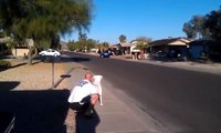 """Coyote jumping a 6'-0"""" wall in Phoenix, Az."""