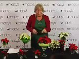 Decorating with Poinsettias with Julie