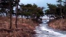 東日本大震災 一宮の津波