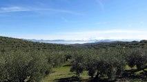 Sierra Nevada National Park, Parque Nacional Sierra Nevada, Granada, Almería, Spain, Europe