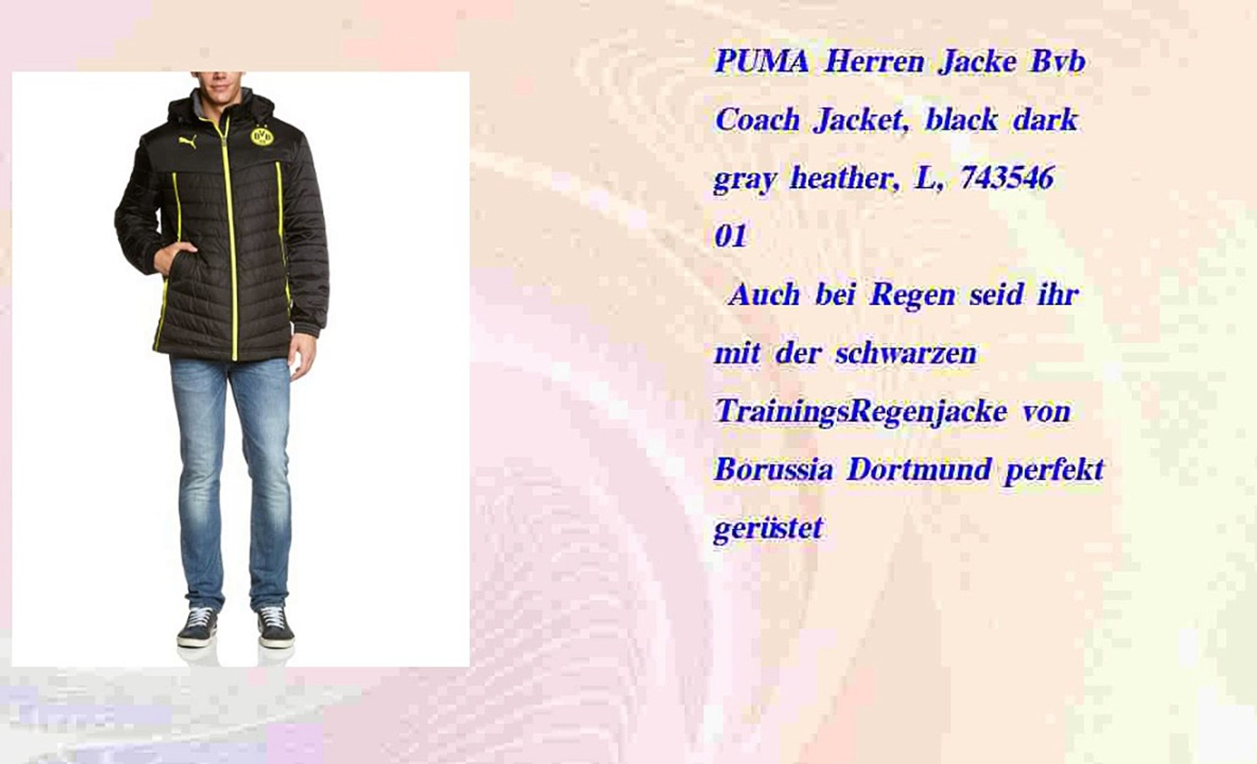PUMA Herren Jacke Bvb Coach Jacket black dark gray