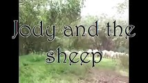 Jody And The Sheep music air - Mike Mills