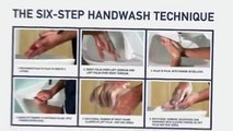Safe Hands Six Step Handwashing