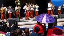 Clasificalos.com  # 16 BANDA TROYANA - RADIO LOBO Festival 2014 Dia De Las Madres  Kern County Fair