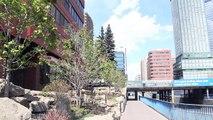 Calgary Alberta Canada Tourism | Downtown Calgary (The Calgary Zoo) | Travel Guide Tour Video