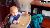 Funny Videos Funny Dogs Funny Cats Funny Fails Funny Pranks Funny baby  Funny Video 2015 P1
