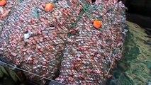Des filets de pêche géants qui captures 100 tonnes de poissons - Désastre écologique