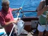 Fishing Cruises - Marina Charters